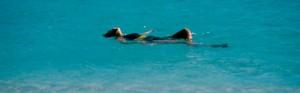 cropped-swimmer.jpg