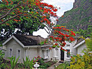 My cottage with Gros Piton on the right